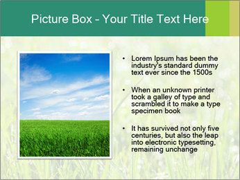 0000083082 PowerPoint Templates - Slide 13