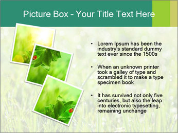 0000083082 PowerPoint Templates - Slide 17