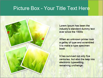 0000083082 PowerPoint Templates - Slide 23
