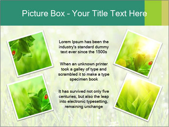 0000083082 PowerPoint Templates - Slide 24