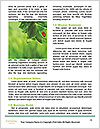 0000083082 Word Template - Page 4
