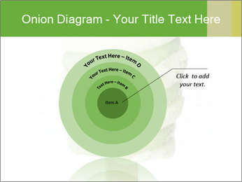 0000083086 PowerPoint Template - Slide 61