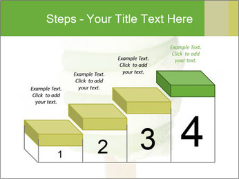 0000083086 PowerPoint Templates - Slide 64