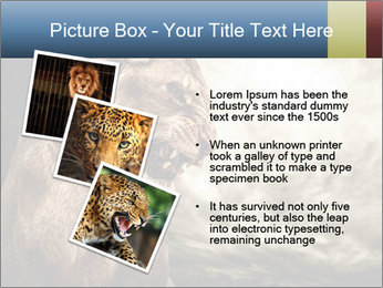 0000083087 PowerPoint Template - Slide 17