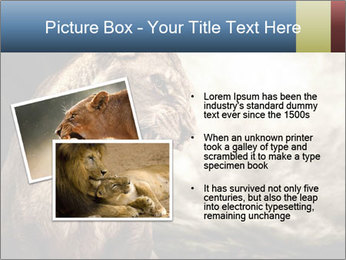 0000083087 PowerPoint Template - Slide 20