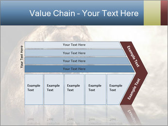 0000083087 PowerPoint Templates - Slide 27