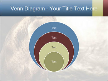 0000083087 PowerPoint Template - Slide 34