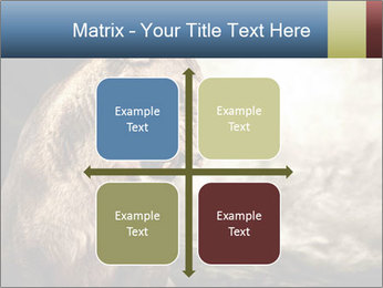 0000083087 PowerPoint Templates - Slide 37