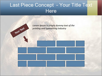 0000083087 PowerPoint Templates - Slide 46