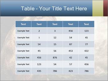 0000083087 PowerPoint Templates - Slide 55