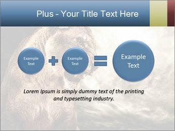 0000083087 PowerPoint Templates - Slide 75