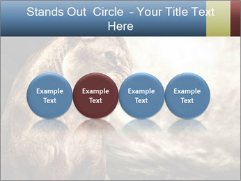 0000083087 PowerPoint Templates - Slide 76