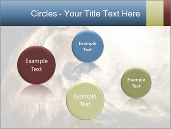 0000083087 PowerPoint Templates - Slide 77