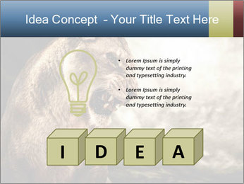 0000083087 PowerPoint Template - Slide 80
