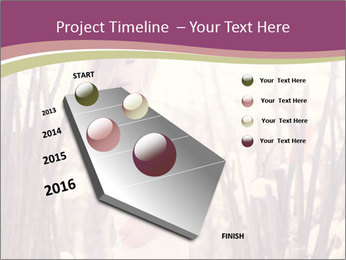 0000083093 PowerPoint Template - Slide 26