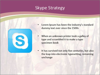 0000083093 PowerPoint Template - Slide 8