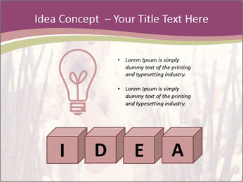 0000083093 PowerPoint Template - Slide 80