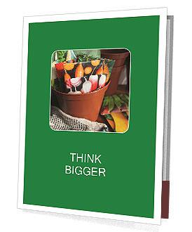 0000083098 Presentation Folder