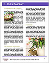 0000083115 Word Templates - Page 3