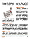 0000083123 Word Templates - Page 4