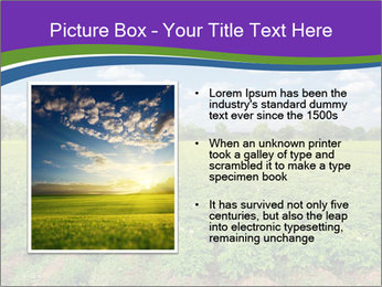 0000083126 PowerPoint Template - Slide 13