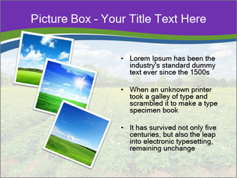 0000083126 PowerPoint Template - Slide 17