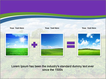 0000083126 PowerPoint Template - Slide 22