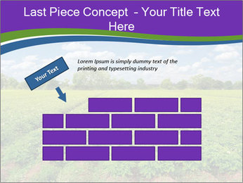 0000083126 PowerPoint Template - Slide 46