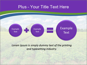 0000083126 PowerPoint Template - Slide 75