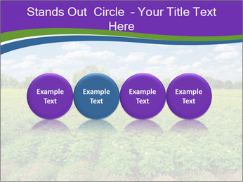 0000083126 PowerPoint Template - Slide 76