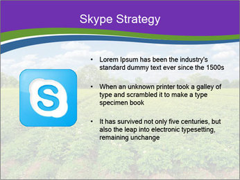 0000083126 PowerPoint Template - Slide 8