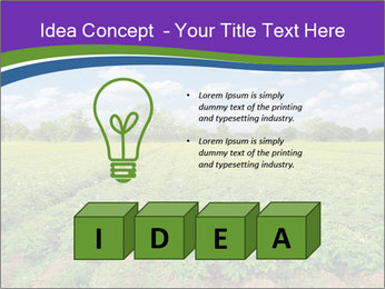 0000083126 PowerPoint Template - Slide 80