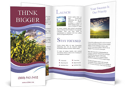 0000083135 Brochure Template