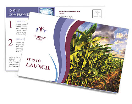 0000083135 Postcard Templates