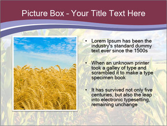 0000083135 PowerPoint Template - Slide 13