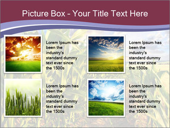 0000083135 PowerPoint Template - Slide 14