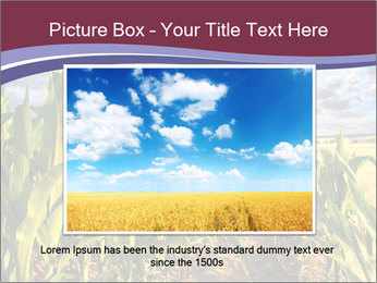 0000083135 PowerPoint Template - Slide 15