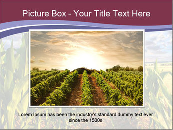 0000083135 PowerPoint Template - Slide 16