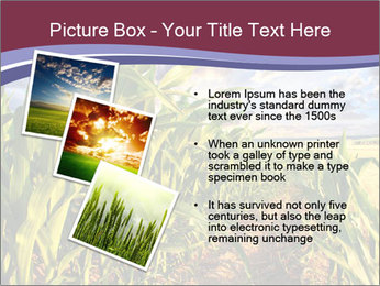0000083135 PowerPoint Template - Slide 17