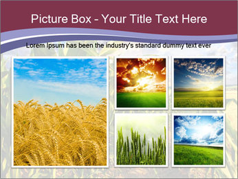 0000083135 PowerPoint Template - Slide 19