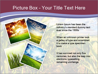 0000083135 PowerPoint Template - Slide 23