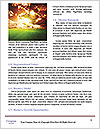 0000083135 Word Template - Page 4