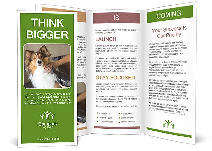 0000083141 Brochure Templates