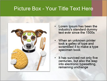 0000083141 PowerPoint Template - Slide 13
