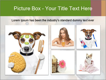 0000083141 PowerPoint Template - Slide 19