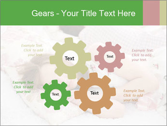 0000083150 PowerPoint Templates - Slide 47