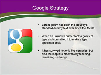 0000083152 PowerPoint Template - Slide 10