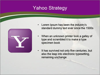 0000083152 PowerPoint Template - Slide 11