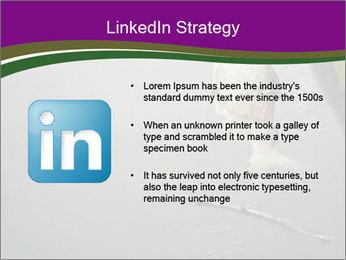 0000083152 PowerPoint Templates - Slide 12