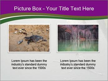 0000083152 PowerPoint Templates - Slide 18